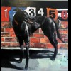 PAUL KENNEDY NEW PAINTINGS NIGHT AT THE DOGS